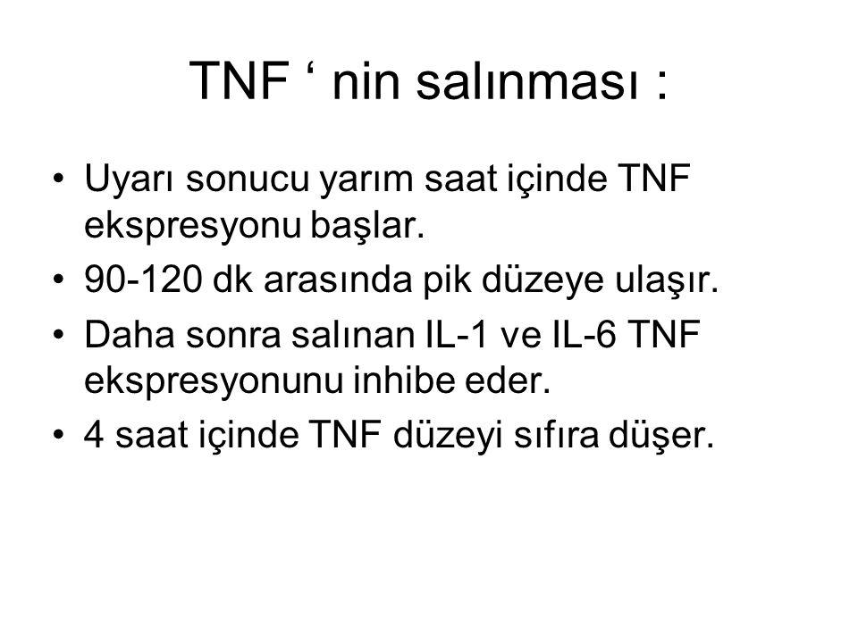 TNF ' nin salınması : Uyarı sonucu yarım saat içinde TNF ekspresyonu başlar. 90-120 dk arasında pik düzeye ulaşır. Daha sonra salınan IL-1 ve IL-6 TNF