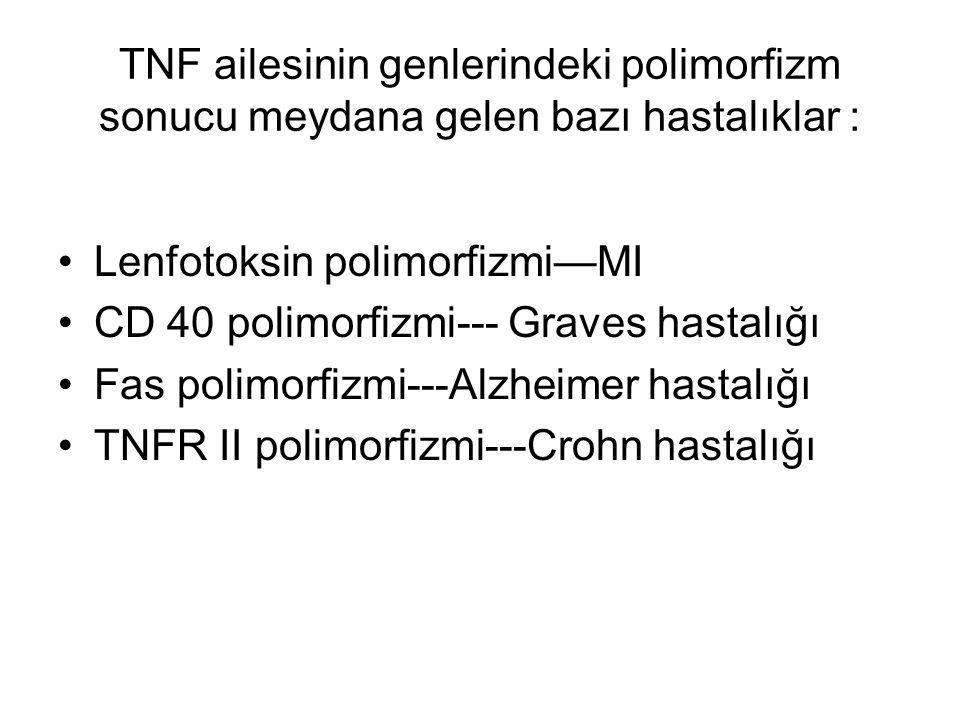 TNF ailesinin genlerindeki polimorfizm sonucu meydana gelen bazı hastalıklar : Lenfotoksin polimorfizmi—MI CD 40 polimorfizmi--- Graves hastalığı Fas