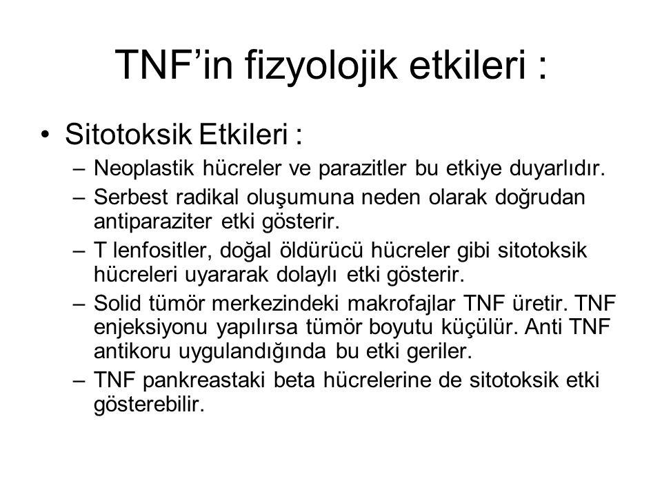 TNF'in fizyolojik etkileri : Sitotoksik Etkileri : –Neoplastik hücreler ve parazitler bu etkiye duyarlıdır. –Serbest radikal oluşumuna neden olarak do