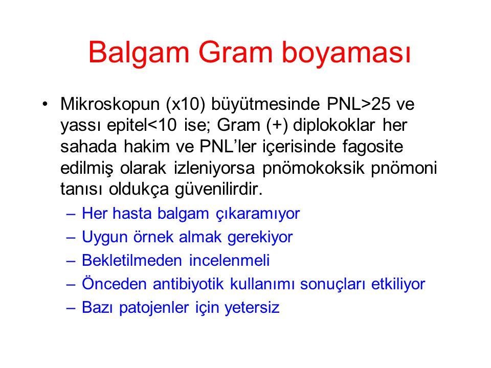 Balgam Gram boyaması Mikroskopun (x10) büyütmesinde PNL>25 ve yassı epitel<10 ise; Gram (+) diplokoklar her sahada hakim ve PNL'ler içerisinde fagosit