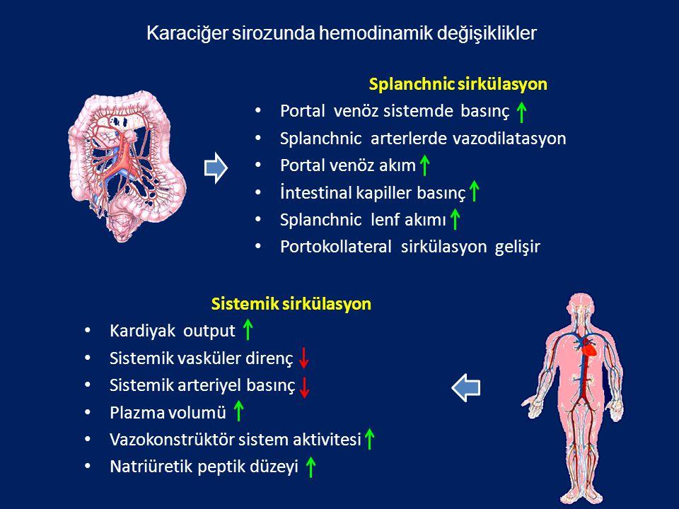 Splanchnic sirkülasyon Portal venöz sistemde basınç Splanchnic arterlerde vazodilatasyon Portal venöz akım İntestinal kapiller basınç Splanchnic lenf