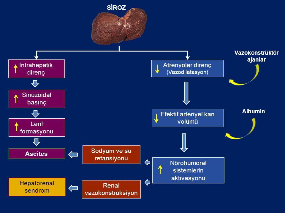 İntrahepatik direnç Sinuzoidal basınç Lenf formasyonu Atreriyoler direnç (Vazodilatasyon) Ascites Efektif arteriyel kan volümü Nörohumoral sistemlerin