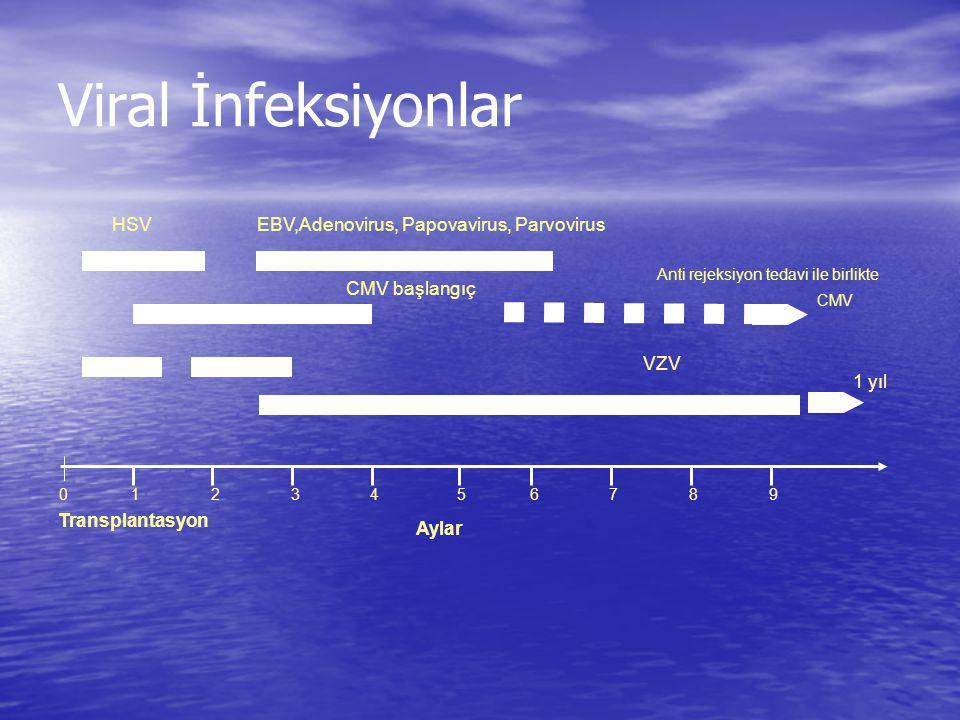 Viral İnfeksiyonlar HSVEBV,Adenovirus, Papovavirus, Parvovirus CMV başlangıç CMV Anti rejeksiyon tedavi ile birlikte VZV 1 yıl 10543268 9 7 Aylar Tran