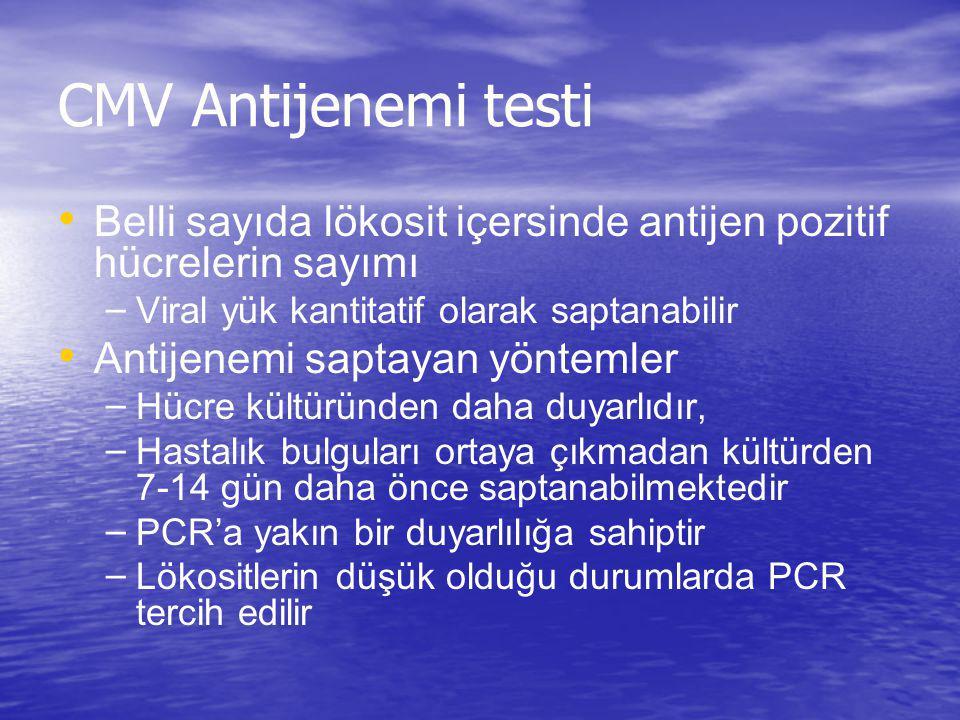 CMV Antijenemi testi Belli sayıda lökosit içersinde antijen pozitif hücrelerin sayımı – Viral yük kantitatif olarak saptanabilir Antijenemi saptayan y