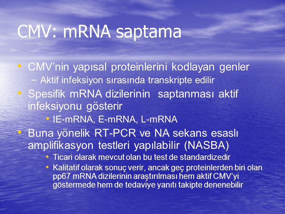 CMV: mRNA saptama CMV'nin yapısal proteinlerini kodlayan genler – Aktif infeksiyon sırasında transkripte edilir Spesifik mRNA dizilerinin saptanması a