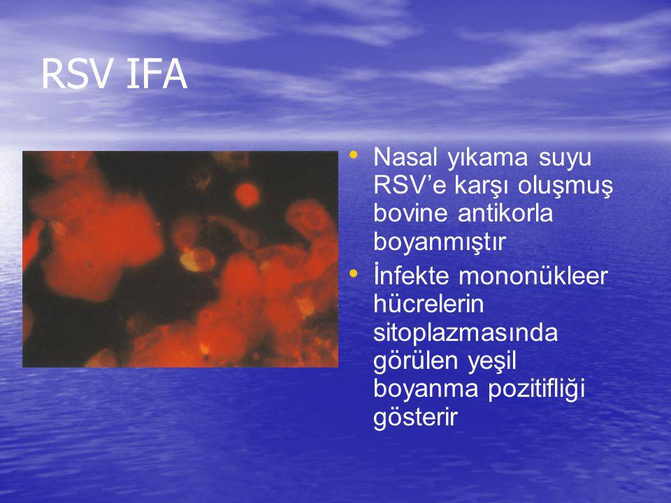 RSV IFA Nasal yıkama suyu RSV'e karşı oluşmuş bovine antikorla boyanmıştır İnfekte mononükleer hücrelerin sitoplazmasında görülen yeşil boyanma poziti