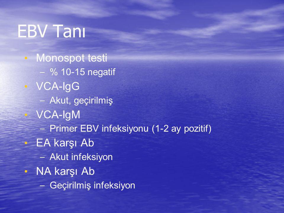 EBV Tanı Monospot testi – % 10-15 negatif VCA-IgG – Akut, geçirilmiş VCA-IgM – Primer EBV infeksiyonu (1-2 ay pozitif) EA karşı Ab – Akut infeksiyon N