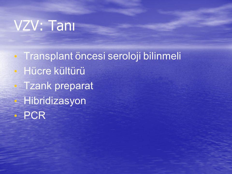 VZV: Tanı Transplant öncesi seroloji bilinmeli Hücre kültürü Tzank preparat Hibridizasyon PCR