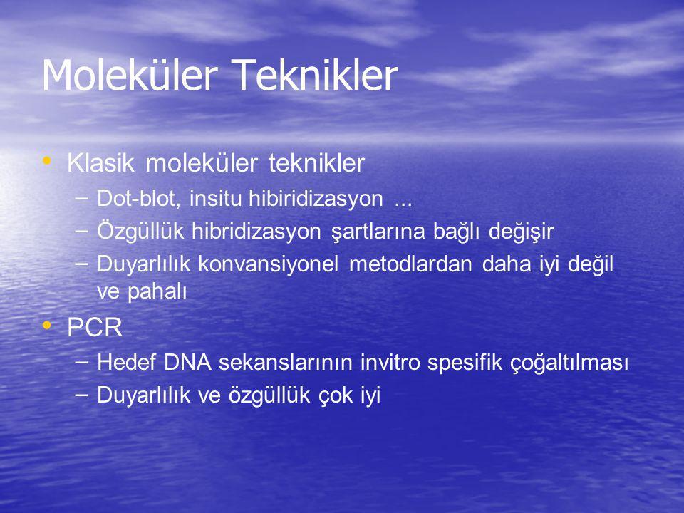 CMV Nükleik Asit Hibridizasyon Kantitatif sonuç verilebilir – Hibrid yakalama CMV DNA testi (700 kopya/ml) – bDNA sinyal amplifikasyon testi (900/10 6 lökosit) Viral yükün düşük olduğu durumlarda izlem için uygun değildir, bDNA'nın kullanımı lökopenik olgularda sınırlıdır