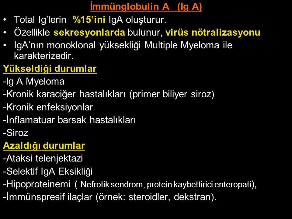 İmmünglobulin A (Ig A) Total Ig'lerin %15'ini IgA oluşturur. Özellikle sekresyonlarda bulunur, virüs nötralizasyonu IgA'nın monoklonal yüksekliği Mult