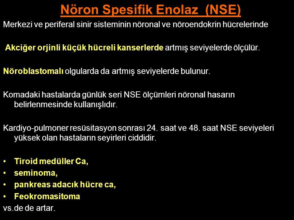 Nöron Spesifik Enolaz (NSE) Merkezi ve periferal sinir sisteminin nöronal ve nöroendokrin hücrelerinde Akciğer orjinli küçük hücreli kanserlerde artmı