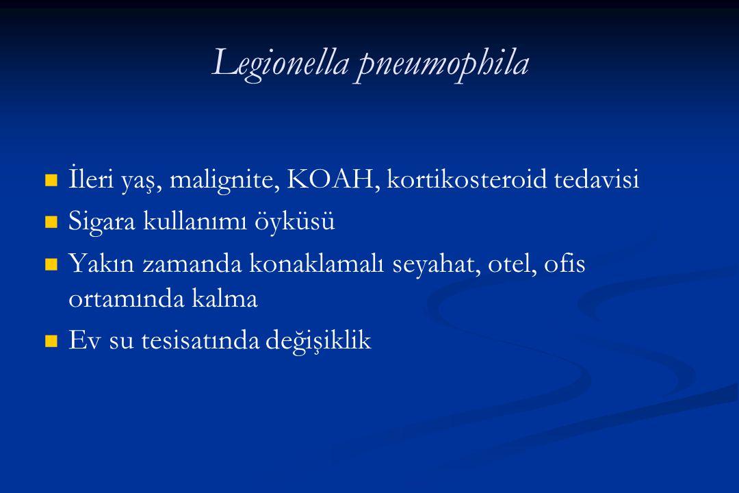 Legionella pneumophila İleri yaş, malignite, KOAH, kortikosteroid tedavisi Sigara kullanımı öyküsü Yakın zamanda konaklamalı seyahat, otel, ofis ortam
