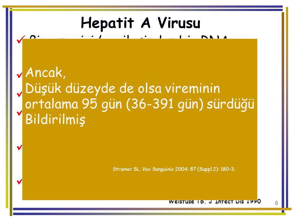 7 Hepatit A Virusu Yeni enfekte, asemptomatik donörden yapılan kan transfüzyonu ile bulaşabilir Rutinde taramaya gerek yok Ateş yüksekliğiGIS semptomlarıAteş yüksekliği, GIS semptomları olanlardan kan transfüzyonu yapılmamalı