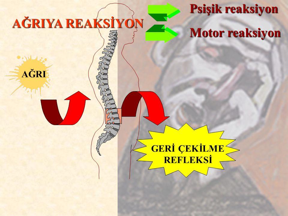 AĞRI GERİ ÇEKİLME REFLEKSİ AĞRIYA REAKSİYON Psişik reaksiyon Motor reaksiyon