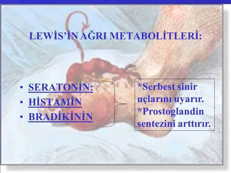 ISI DÜZENİNİ DENGELEYEN FAKTÖRLER: Isı yapımını arttıran maddeler Sempatik aktivite artışı Katekolaminler Tiroid hormonu Yüksek kalorili besinler Spesifik dinamik etki Titreme Karaciğer (Metabolizmayı ayarlar.)