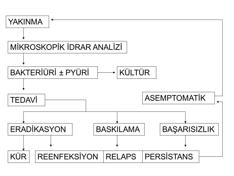 1.İntroital kolonizasyon 2.Üretrada nonlaminar idrar akımı 3.Musin tabakası 4.Epiteliyal hücrelerdeki reseptörler 5.Üriner antikorlar 6.Mesane anomalileri 7.Mesanenin koordine boşalması 8.Bakterinin aşağıdan yukarıya (ascendan) ilerlemesi 9.VUR 10.Böbrek duyarlılığı