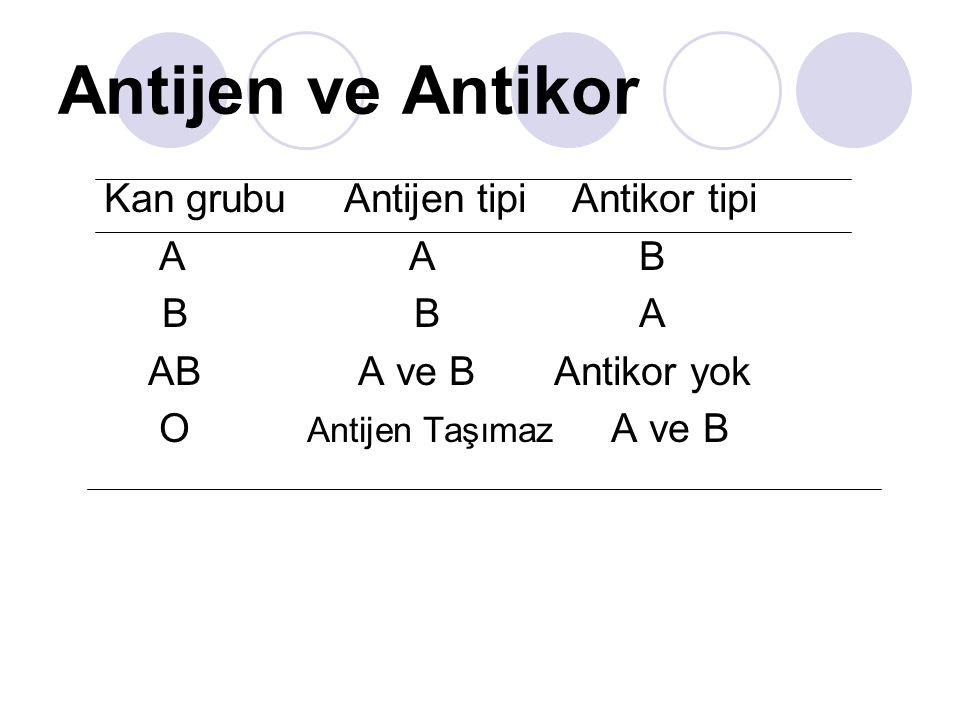 Antijen ve Antikor Kan grubu Antijen tipi Antikor tipi A A B B B A AB A ve B Antikor yok O Antijen Taşımaz A ve B