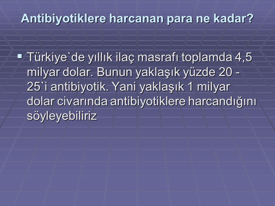 Antibiyotiklere harcanan para ne kadar?  Türkiye`de yıllık ilaç masrafı toplamda 4,5 milyar dolar. Bunun yaklaşık yüzde 20 - 25`i antibiyotik. Yani y