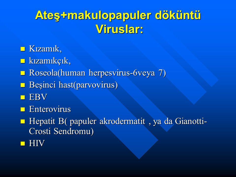 Ateş+makulopapuler döküntü Viruslar: Kızamık, Kızamık, kızamıkçık, kızamıkçık, Roseola(human herpesvirus-6veya 7) Roseola(human herpesvirus-6veya 7) B