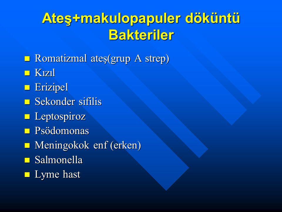 Ateş+makulopapuler döküntü Bakteriler Romatizmal ateş(grup A strep) Romatizmal ateş(grup A strep) Kızıl Kızıl Erizipel Erizipel Sekonder sifilis Sekon
