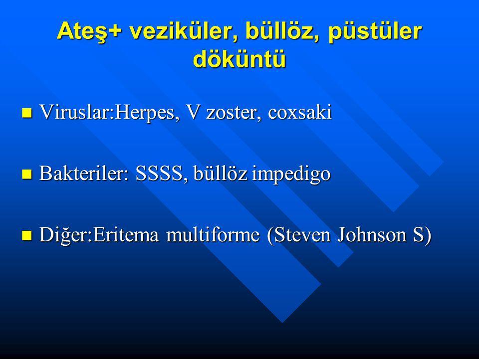 Ateş+ veziküler, büllöz, püstüler döküntü Viruslar:Herpes, V zoster, coxsaki Viruslar:Herpes, V zoster, coxsaki Bakteriler: SSSS, büllöz impedigo Bakt