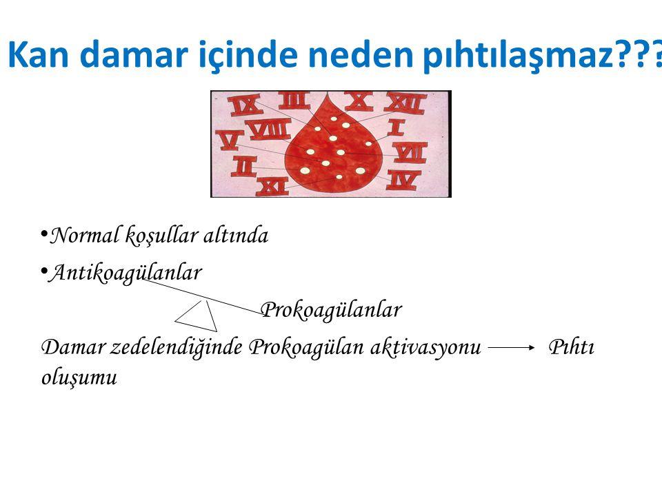 Normal Damar Sisteminde Pıhtılaşmanın önlenmesi (Intravasküler Antikoagülanlar) Endotele ait faktörler 1)Endotelin düzgünlüğü 2)Glikokaliks tabakası 3