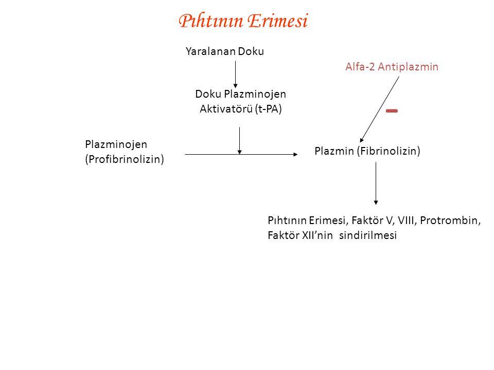 Kan Pıhtılaşma Testleri Kanama Zamanı 1-6 dk Pıhtılaşma zamanı 6-10 dk Protrombin zamanı 12 sn