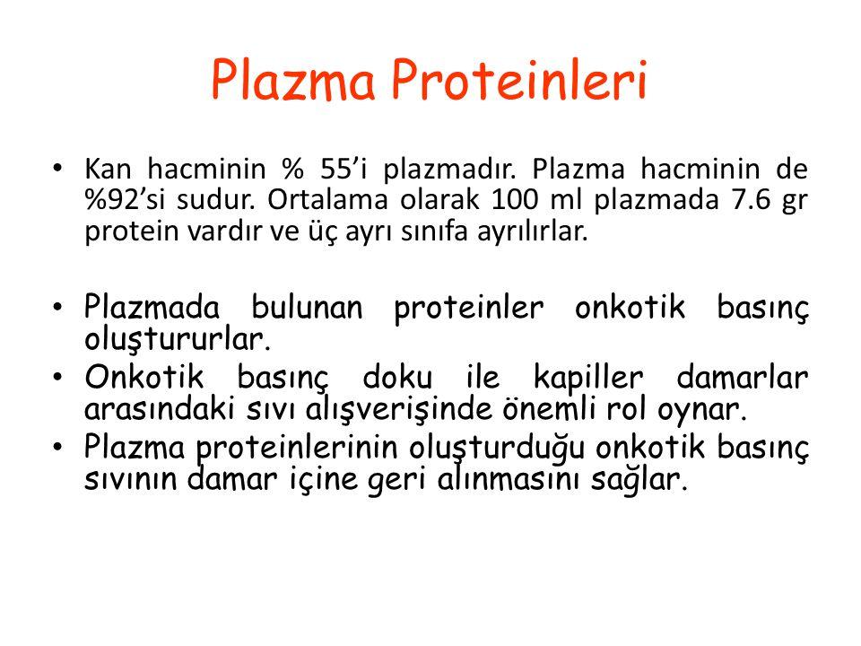 Plazmanın Bileşimi-3 Besinler glikoz amino asitler lipidler (total) kolesterol vitaminler eser elementler %100 mg (5,6 mM) %40 mg (2 mM) %500 mg (7,5