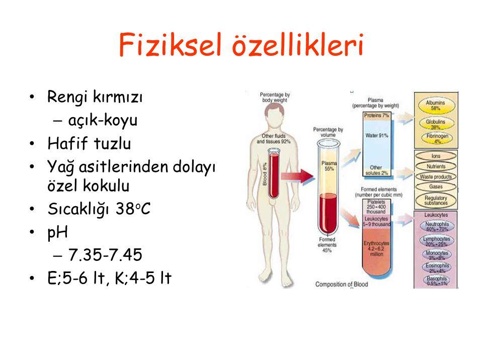 Dolaşımdaki kan hacmi, vücut ağırlığının ~% 7- 8'i kadar Erişkin bir erkekte 5-6 litre kadında ise 4-5 litre kan bulunur bu farklılık daha çok vücut a