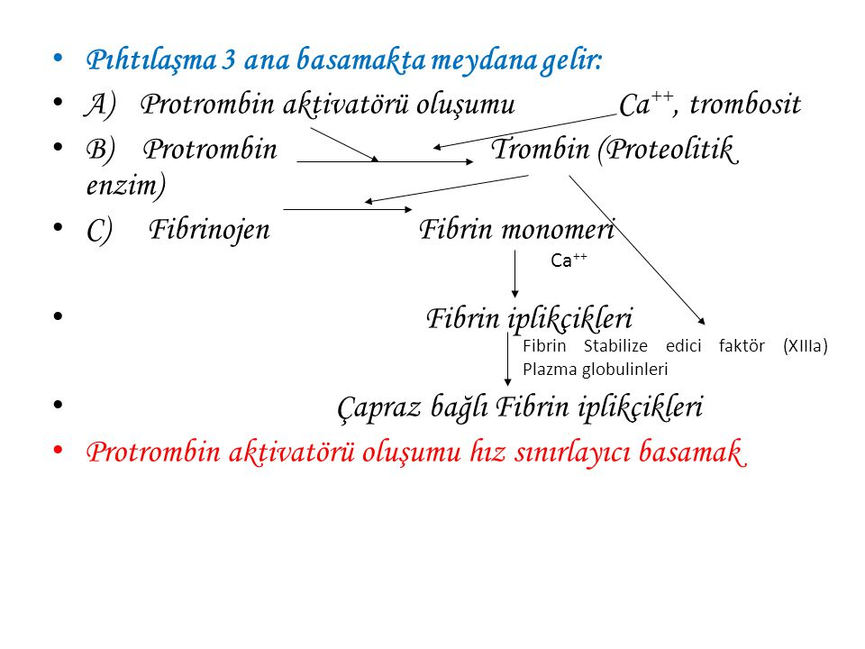 Pıhtılaşma Mekanizması 1.Protrombin aktivatörünün oluşması 2.Oluşan protrombin aktivatörünün Ca 2+ iyonlarının beraberliğinde protrombinden trombin ol