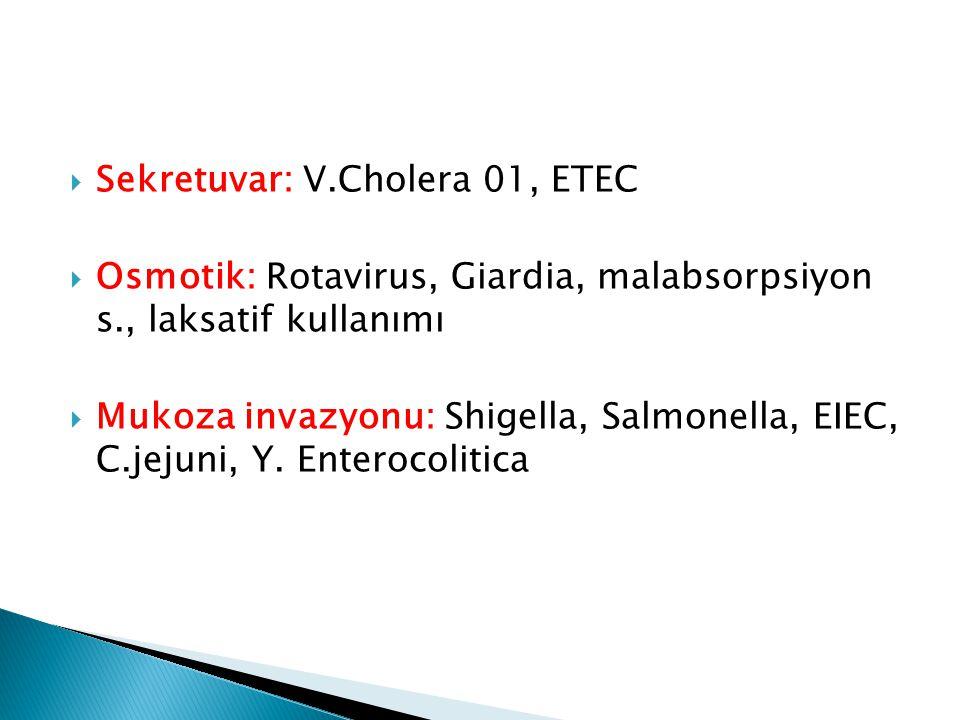  Sekretuvar: V.Cholera 01, ETEC  Osmotik: Rotavirus, Giardia, malabsorpsiyon s., laksatif kullanımı  Mukoza invazyonu: Shigella, Salmonella, EIEC,