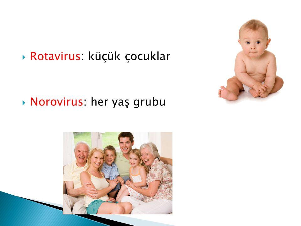 Rotavirus: küçük çocuklar  Norovirus: her yaş grubu