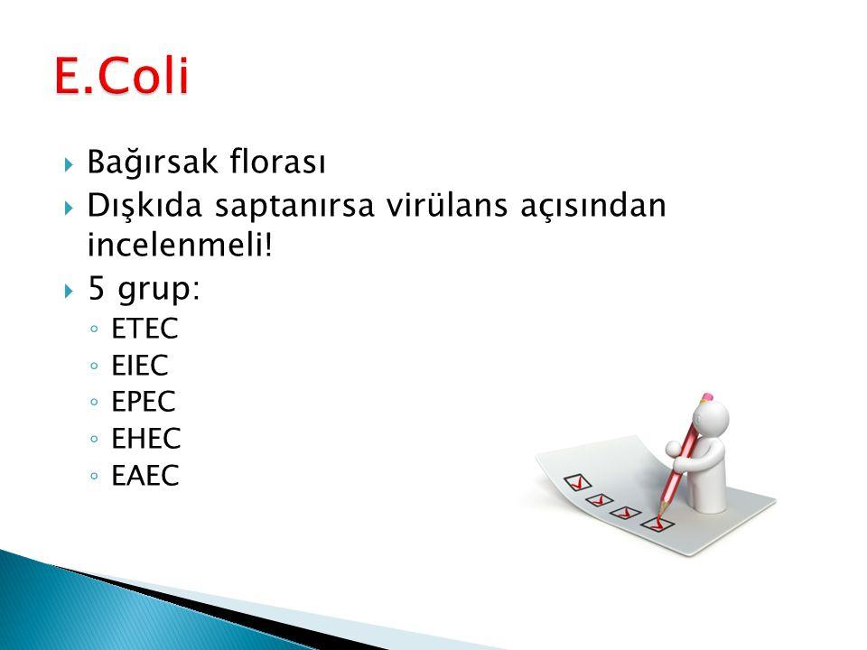  Bağırsak florası  Dışkıda saptanırsa virülans açısından incelenmeli!  5 grup: ◦ ETEC ◦ EIEC ◦ EPEC ◦ EHEC ◦ EAEC