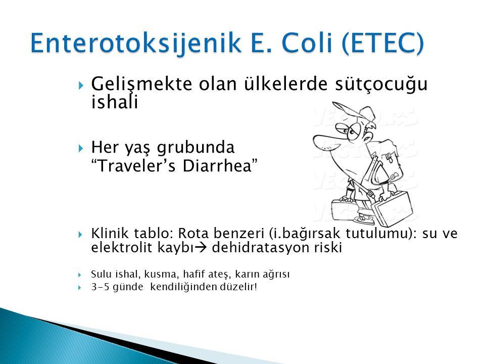 """ Gelişmekte olan ülkelerde sütçocuğu ishali  Her yaş grubunda """"Traveler's Diarrhea""""  Klinik tablo: Rota benzeri (i.bağırsak tutulumu): su ve elektr"""