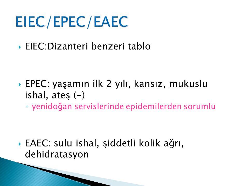  EIEC:Dizanteri benzeri tablo  EPEC: yaşamın ilk 2 yılı, kansız, mukuslu ishal, ateş (-) ◦ yenidoğan servislerinde epidemilerden sorumlu  EAEC: sul