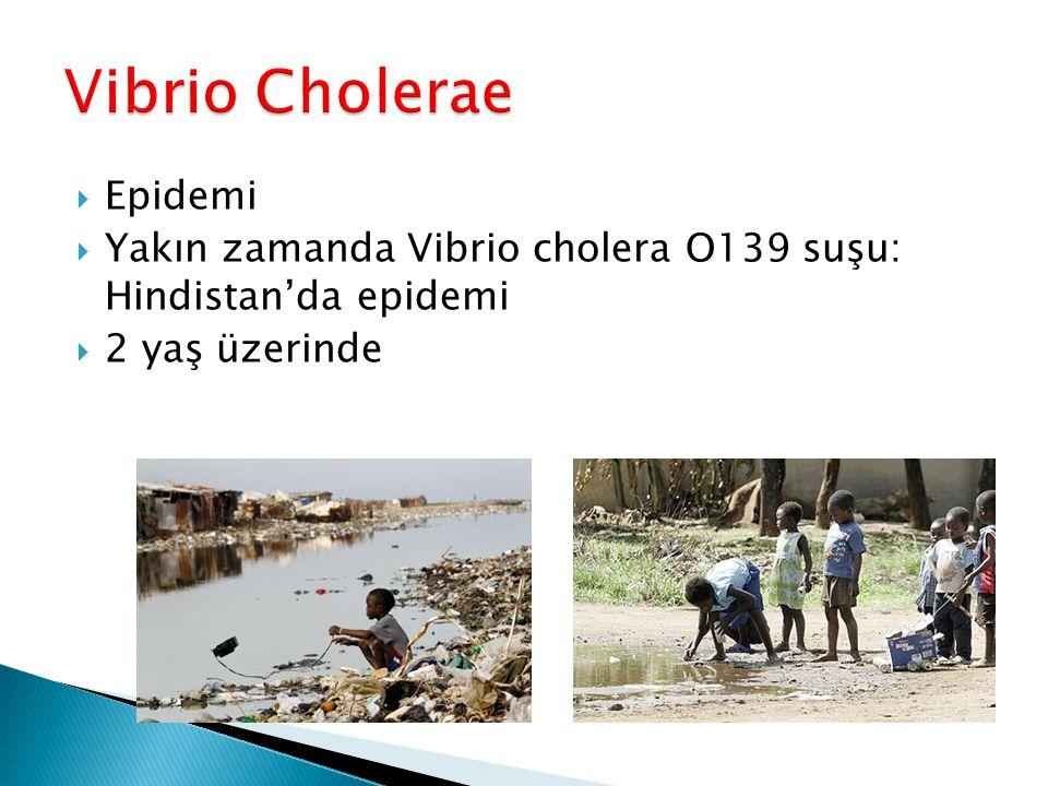  Epidemi  Yakın zamanda Vibrio cholera O139 suşu: Hindistan'da epidemi  2 yaş üzerinde