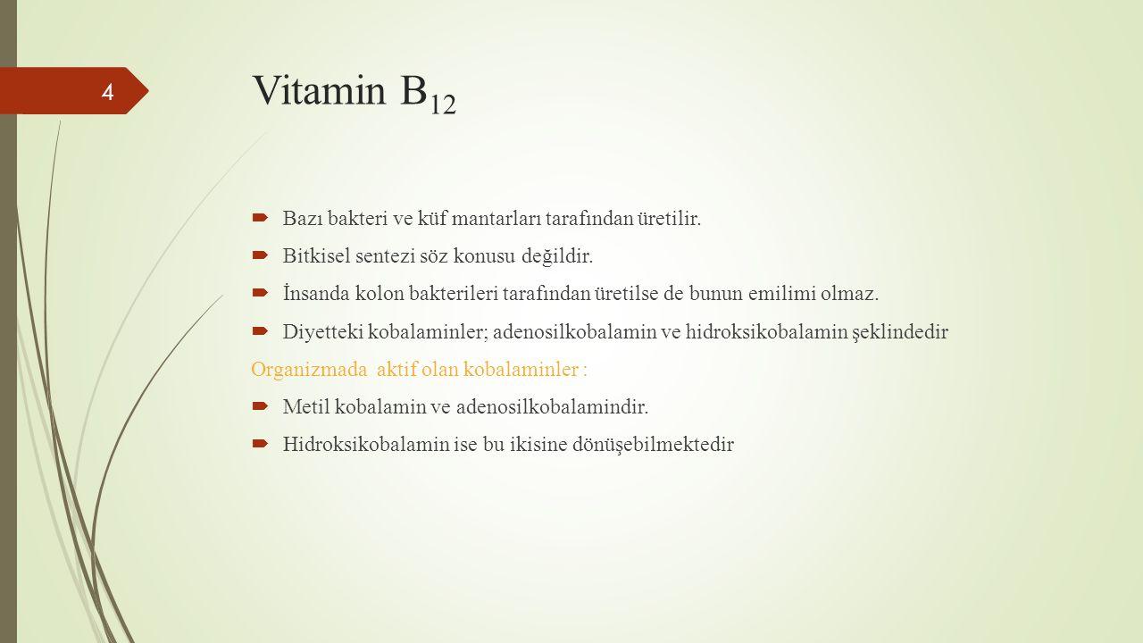 Vitamin B 12  Bazı bakteri ve küf mantarları tarafından üretilir.  Bitkisel sentezi söz konusu değildir.  İnsanda kolon bakterileri tarafından üret