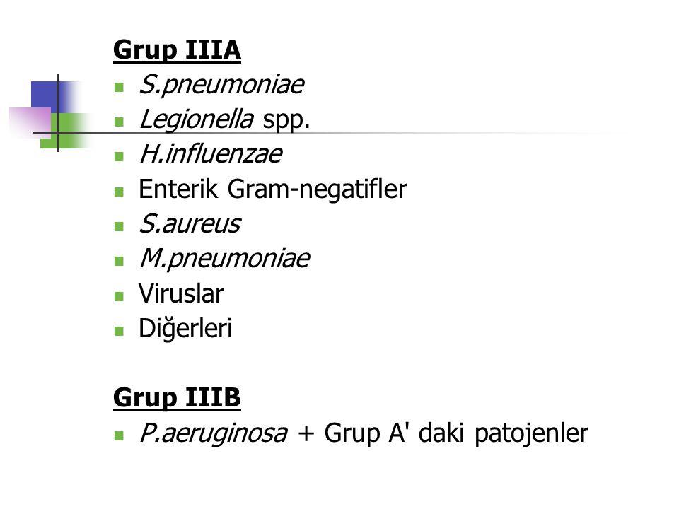 Grup IIIA S.pneumoniae Legionella spp. H.influenzae Enterik Gram-negatifler S.aureus M.pneumoniae Viruslar Diğerleri Grup IIIB P.aeruginosa + Grup A'