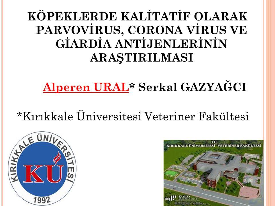 KÖPEKLERDE KALİTATİF OLARAK PARVOVİRUS, CORONA VİRUS VE GİARDİA ANTİJENLERİNİN ARAŞTIRILMASI Alperen URAL* Serkal GAZYAĞCI *Kırıkkale Üniversitesi Vet