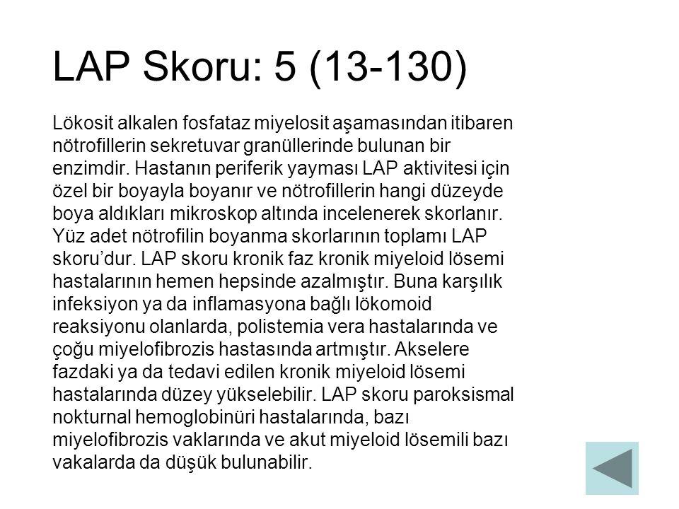 LAP Skoru: 5 (13-130) Lökosit alkalen fosfataz miyelosit aşamasından itibaren nötrofillerin sekretuvar granüllerinde bulunan bir enzimdir. Hastanın pe
