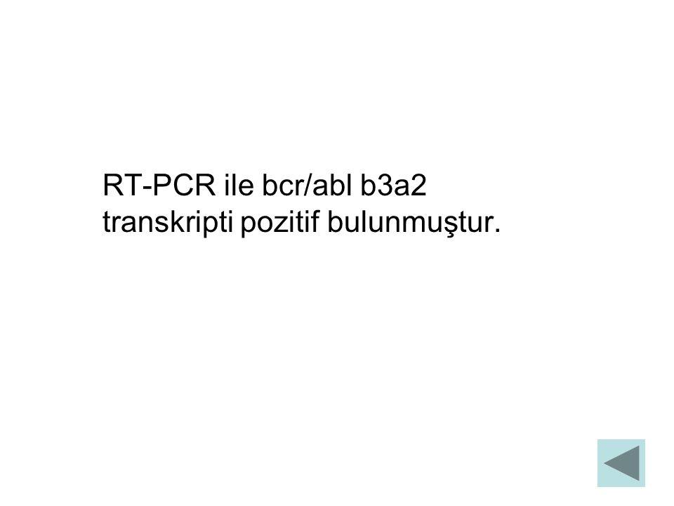 RT-PCR ile bcr/abl b3a2 transkripti pozitif bulunmuştur.
