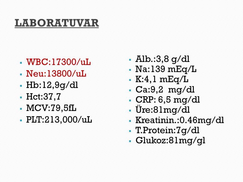  WBC:17300/uL  Neu:13800/uL  Hb:12,9g/dl  Hct:37,7  MCV:79,5fL  PLT:213,000/uL  Alb.:3,8 g/dl  Na:139 mEq/L  K:4,1 mEq/L  Ca:9,2 mg/dl  CRP
