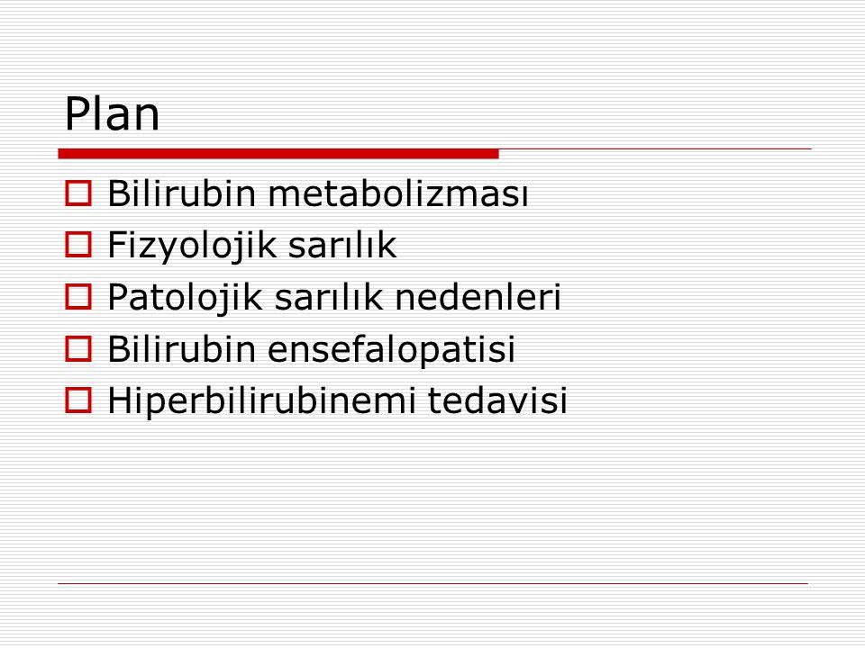 Plan  Bilirubin metabolizması  Fizyolojik sarılık  Patolojik sarılık nedenleri  Bilirubin ensefalopatisi  Hiperbilirubinemi tedavisi