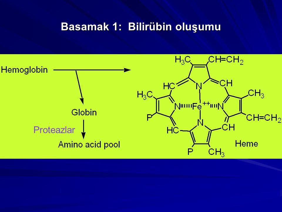 Direct ve Indirect Bilirübin Suda-çözünür (conjugated) BR Direct BR olarak adlandırılır Alkol ve başka ayıraçlar eklenebilir, Suda-çözünmeyen BR (unconjugated, albumin'e bağlı) Indirect BR denir