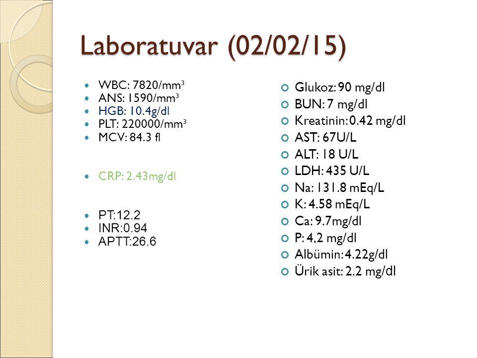 Laboratuvar (02/02/15) WBC: 7820/mm³ ANS: 1590/mm³ HGB: 10.4g/dl PLT: 220000/mm³ MCV: 84.3 fl CRP: 2.43mg/dl PT:12.2 INR:0.94 APTT:26.6 Glukoz: 90 mg/dl BUN: 7 mg/dl Kreatinin: 0.42 mg/dl AST: 67U/L ALT: 18 U/L LDH: 435 U/L Na: 131.8 mEq/L K: 4.58 mEq/L Ca: 9.7mg/dl P: 4,2 mg/dl Albümin: 4.22g/dl Ürik asit: 2.2 mg/dl