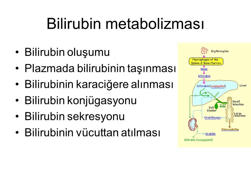 Bilirubin metabolizması Bilirubin oluşumu Plazmada bilirubinin taşınması Bilirubinin karaciğere alınması Bilirubin konjügasyonu Bilirubin sekresyonu B
