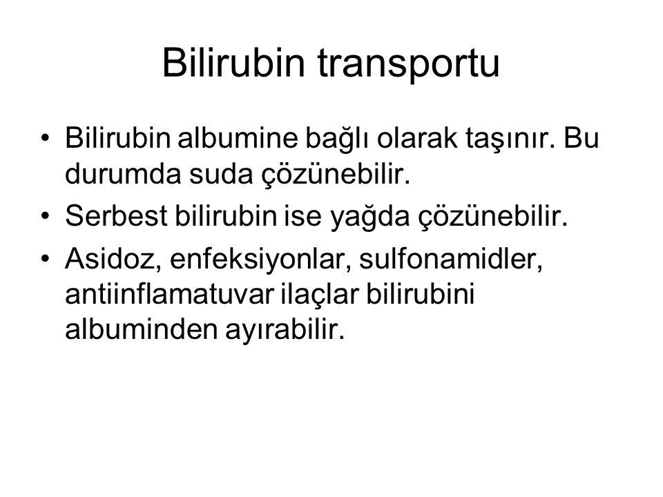 Bilirubin transportu Bilirubin albumine bağlı olarak taşınır. Bu durumda suda çözünebilir. Serbest bilirubin ise yağda çözünebilir. Asidoz, enfeksiyon