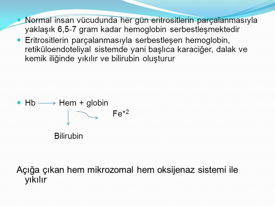 Normal insan vücudunda her gün eritrositlerin parçalanmasıyla yaklaşık 6,5-7 gram kadar hemoglobin serbestleşmektedir Eritrositlerin parçalanmasıyla serbestleşen hemoglobin, retiküloendoteliyal sistemde yani başlıca karaciğer, dalak ve kemik iliğinde yıkılır ve bilirubin oluşturur Hb Hem + globin Fe +2 Bilirubin Açığa çıkan hem mikrozomal hem oksijenaz sistemi ile yıkılır