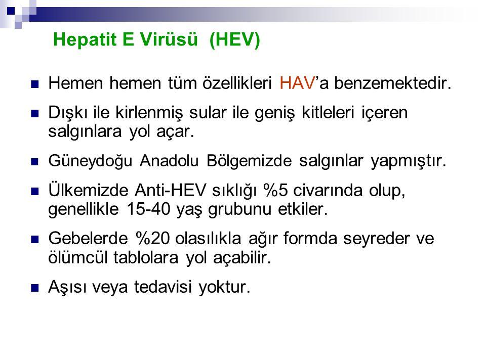 Hepatit E Virüsü (HEV) Hemen hemen tüm özellikleri HAV'a benzemektedir. Dışkı ile kirlenmiş sular ile geniş kitleleri içeren salgınlara yol açar. Güne