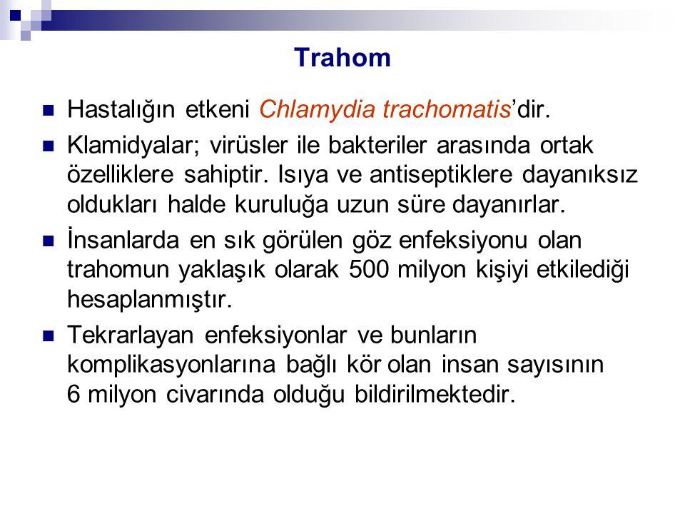Trahom Hastalığın etkeni Chlamydia trachomatis'dir. Klamidyalar; virüsler ile bakteriler arasında ortak özelliklere sahiptir. Isıya ve antiseptiklere